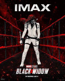 BLACK WIDOW / Action / Américain, 2h13